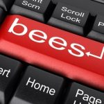 From Bee Hives to Hard Drives – How Bees Changed the Web