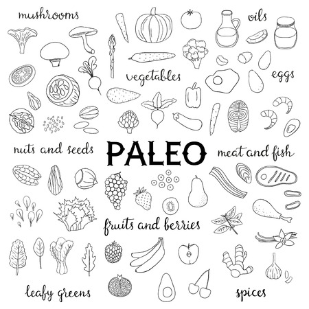 Paleo Food Diet